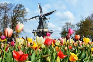 park kekenhof holland april1