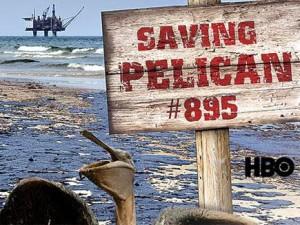 Спасти пеликанов