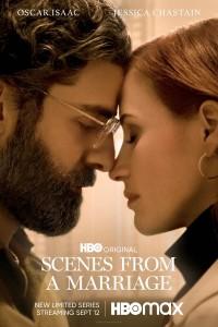 yespremeyry serials scene marriage life